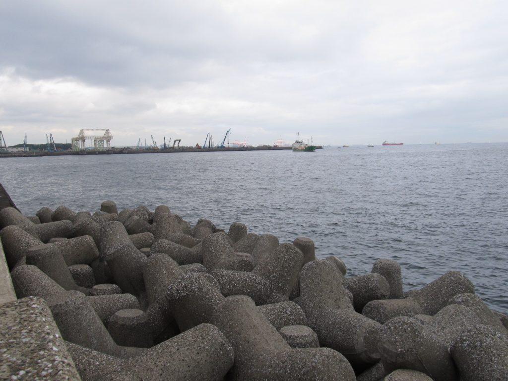 釣り場 八景島 福浦岸壁・八景島の対岸で夜通しアナゴ釣りをするとこうなるぞ!